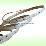 12V/24V 70LEDs/M SMD3014 순수한 백색 LED 리본