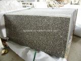 Punto del granito G664, colonne montanti, impronte per il progetto