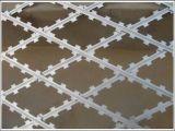 콘서티나 면도칼 철사 또는 Cbt65는 코일 면도칼 가시철사를 골라낸다