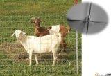 最もよい価格は結び目のタイプ製造のステンレス鋼牛供給の塀の牧草地の金網の塀に電流を通した