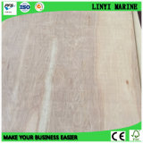 Birch Plywood D/E Grade E2 Glue Type II Packging Grade
