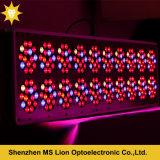 아폴로 20 900W 고성능 LED는 가벼운 가득 차있는 스펙트럼을 증가한다