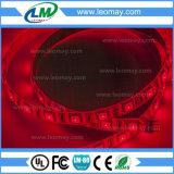 Indicatore luminoso di striscia di illuminazione SMD5050 LED del partito con 2 anni di garanzia
