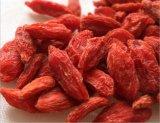 Nespolo Ningxia organici bacche di Goji