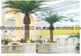 Palma esterna della noce di cocco della data della decorazione del giardino dell'albero artificiale della palma da datteri