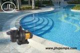 Bomba da piscina da potência solar, bomba sem escova da C.C.
