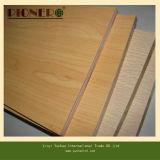 Álamo / Eucalyptus núcleo laminado de melamina madera contrachapada de Gabinete