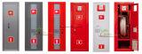 Gabinete de la boca de riego del metal / puerta metálica de la puerta 6kg Gabinete del enteduidor