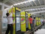Enfriador de pantalla vertical de bebidas 450L con puerta simple