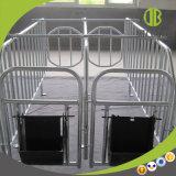 Stalle en acier de gestation de porc d'assurance qualité pour des caisses de gestation de truie