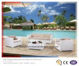 Moderno jardín artificial exterior sofá de mimbre de muebles de jardín (TG-3025)