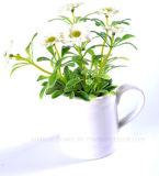 Margarita artificial viva en el crisol de cerámica para la decoración del hogar/de la oficina/del hotel