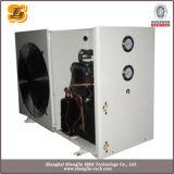 Bomba de calor de nova fonte de água de modelo (SLW100D)