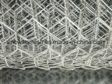 競争価格の電流を通された六角形の金網