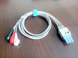 Cable del tronco ECG de Philips 12pin Snap&Clip 3