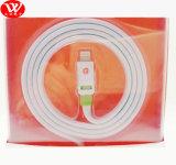 Câble de caractéristiques plat du griffon USB 3m avec l'emballage