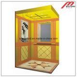Используемый роскошью домой лифт подъема или виллы