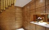 Противобактериологическая панель Vinly стены для стационара или дома престарелых