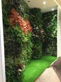 Piante e fiori artificiali della parete verde Gu-Mx-Green-Wall007