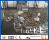 fruit sorterende machine