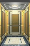 Машина Roo подъема лифта пассажира и комната машины более менее
