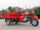 Triciclo del motor del cargo de Kinglion de tres ruedas