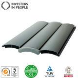 Aluminium-/Aluminiumlegierung-Strangpresßling-Profile für Tür Shutters (RAL-153)