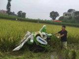 mini máquina segador del arroz de la cosechadora 10HP para agrícola/la granja