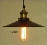 Lampe pendante industrielle d'Edison de type de pays
