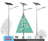Zonne LED Street Light voor Christmas Decoration
