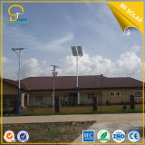 LED Street Light 60W Top Sale Factory Price, iso Quality Proof del CE