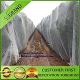 Rete di plastica della protezione della grandine della rete della grandine di agricoltura anti per protezione dell'albero da frutto
