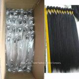 工場卸し売り加工されていない人間のブラジルのバージンの毛のかつら