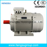 Электрический двигатель индукции AC Ye3 3kw-8p трехфазный асинхронный Squirrel-Cage для водяной помпы, компрессора воздуха