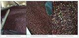 Classificador da cor de alimento do classificador da cor do feijão vermelho