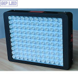 최고 공장 가격 LED는 가정 플랜트를 위해 가볍게 증가한다