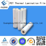 Animale domestico Thermal Film per Printing