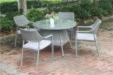 Напольные обедая таблица и стул сада
