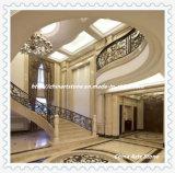 Mattonelle di marmo Polished per la parete ed il pavimento