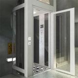 Levage à la maison de petits ascenseurs d'ascenseur de villa d'entraînement de Deeoo Vvvf mini
