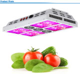 Serre Veg en Bloom 560W LED Grow Lighting