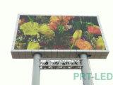 높은 광도를 가진 싼 비용 P10 옥외 LED 단말 표시