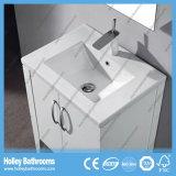 Vanité américaine de salle de bains en bois solide de contrat de type avec le Module de miroir (BV204W)