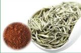 El polifenol del té reduce el polifenol del té de la presión arterial