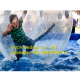 Alquiler de la bola del agua de /Inflatable de la piscina de la bola del agua que recorre que recorre