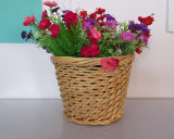 Корзина цветка вербы высокого качества Handmade естественная (BC-ST1224)