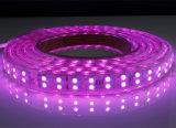 indicatore luminoso di striscia flessibile del cambiamento LED di colore di RGB del collegare di rame di 120LEDs/M