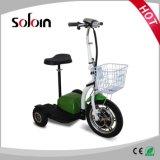 36V Foldable 350W 기동성 3 바퀴 전기 세발자전거 (SZE350S-3)