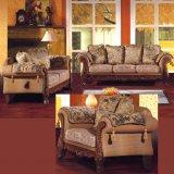 Sofá de la tela con el marco y el vector de madera de la cara (D92B) del sofá