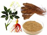 Ligustilide 1%, выдержка дягиля Ferulic0.1%-0.3% естественная/P.E. Gui Dang